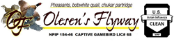 Olesen's Flyway a South Dakota game bird breeder. South Dakota pheasants, chukars, bobwhite quail.